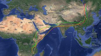 16 országon át, 12 ezer kilométernyi utat tett meg egy kakukk