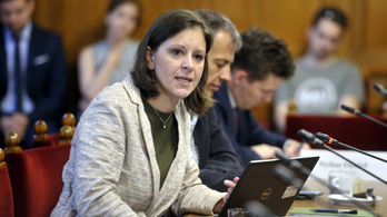 Az Alkotmánybírósághoz fordul az ellenzék a különleges gazdasági övezetek kijelölése miatt