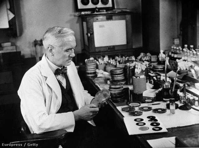 Sir Alexander Fleming (1881 - 1955)