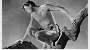 Igaz történet: ezt az erdélyi kisfiút ágyékkötős Tarzanként ismerte meg a világ