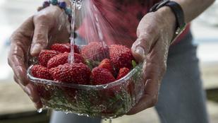Hogyan fertőtlenítsük szakszerűen a gyümölcsöket?
