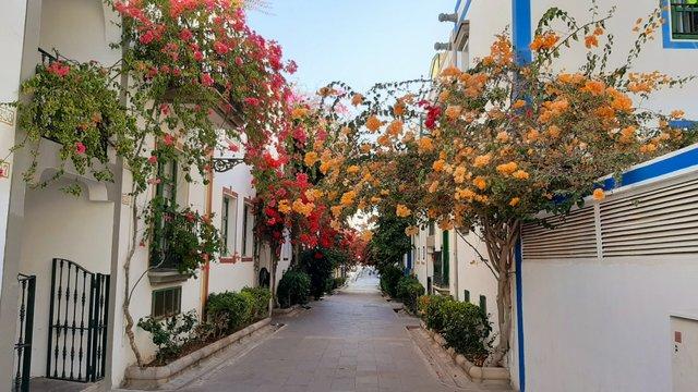 Csodálatos növények és faragott erkélyek: ez Gran Canaria