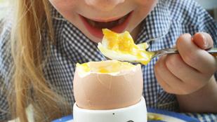 Így lesznek tökéletesek a tojásételek – íme az alapszabályok