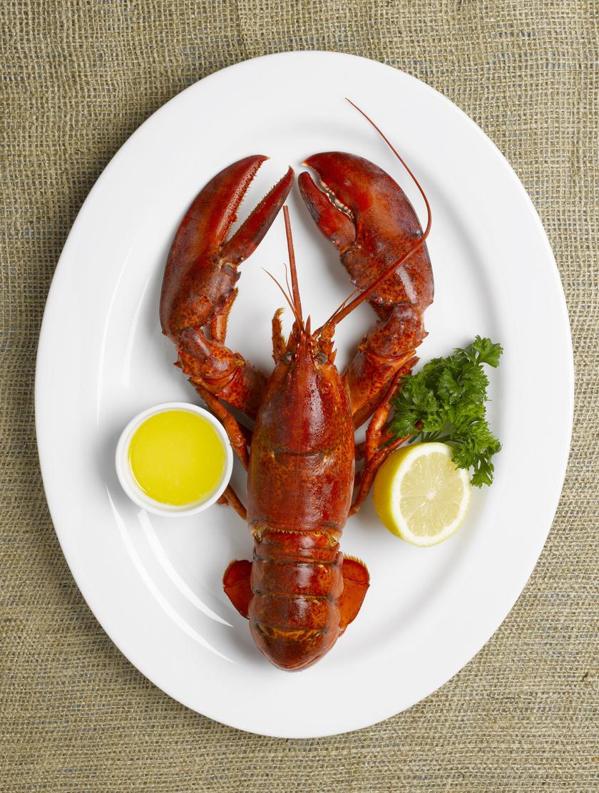 A luxuséttermek étlapján szerepel manapság a homár, ám a történelem során sokáig emberi fogyasztásra szinte alkalmatlannak tartották, legfeljebb a foglyok és a legszegényebbek ették, az amerikai kontinens keleti részén pedig csak trágyaként használták. A vasút térnyerésével azonban másutt is elterjedt, ahol ínyenc falatnak számított, így egyre értékesebb lett.