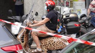 Stefano Gabbana leopárdmintás robogón közlekedik, de zokniszandálban
