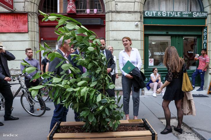 Baranyi Krisztina és Ungváry Krisztián egy a Lónyay utcán elhelyezett fánál