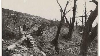 Tízezer sosem látott első világháborús és erdélyi fotó került fel a netre
