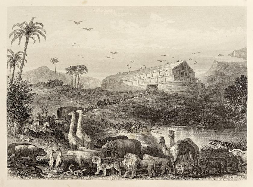 Az özönvíz a Biblia írása szerint a hegységeket is ellepte, és a bárka öt hónappal később az Ararát hegy csúcsán feneklett meg.
