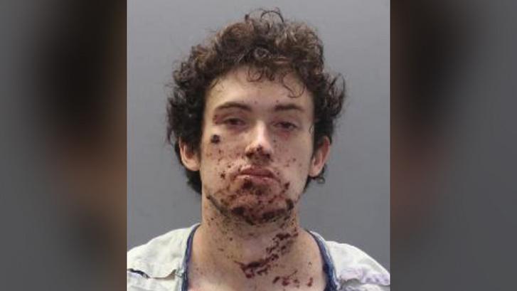 Cole Carini letartóztatásakor