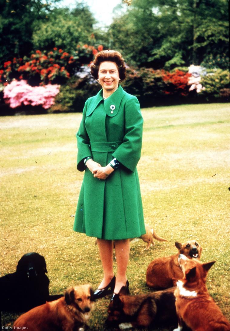 II. Erzsébet és corgijai a hatvanas években, Sandringhamben.