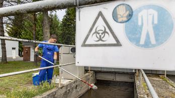 Ezekben a városokban csökkent a szennyvízben a koronavírus-koncentráció