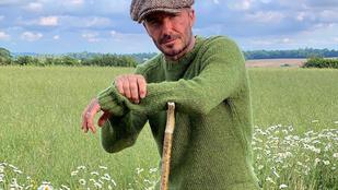 David Beckham nagypapa pulcsiban is sármos, Claudia Schiffer a 90'-es évekből posztolt