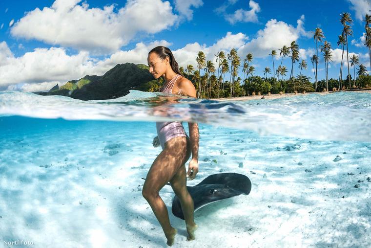 Ha kigyönyörködte magát a bikinis szépségekben (vagy rájákban, kinek mi tetszik jobban), ideje kijönni a vízből és megcélozni a szárazföldet