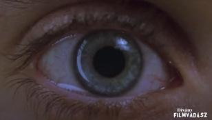 Filmvadász: Találd ki, melyik filmből van a kép!