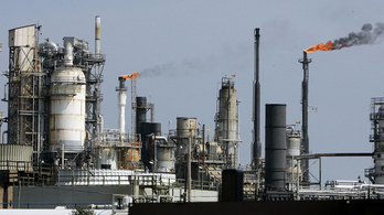 Olajipar: a mesterséges üzemanyag a tiszta jövő