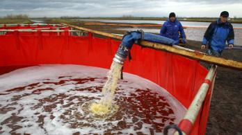 Megtisztították az olajtól a norilszki folyót