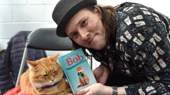 Elpusztult Bob, az utcamacska, a világ leghíresebb kóbor macskája