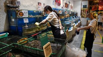 A pekingi piac több részén felfedezték a koronavírust