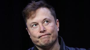 Elon Musk megszólalt az Amber Heard és Cara Delevigne-féle hármasszexről