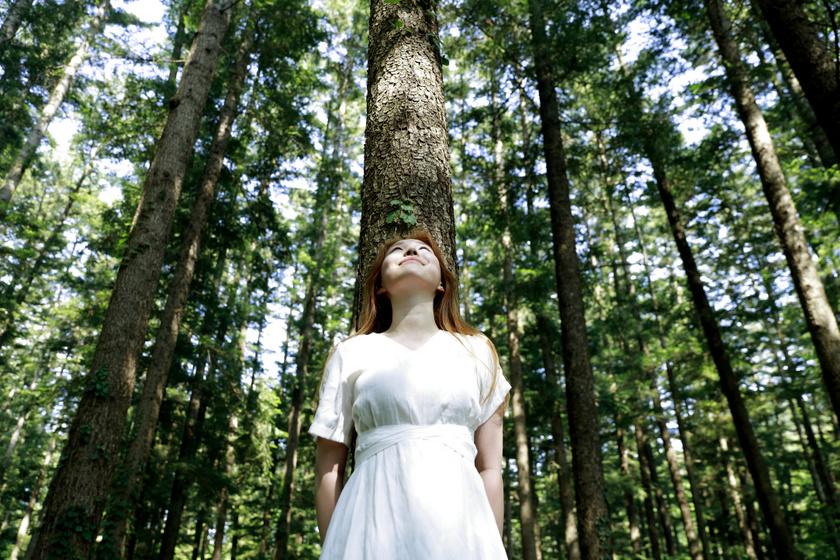Az erdőfürdő 4 csodálatos hatása a szervezetre: miért hat jótékonyan a kortizolszintre?