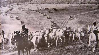 Az amerikaiak, a kozákok és a németek együtt mentették meg a lipicai ménest