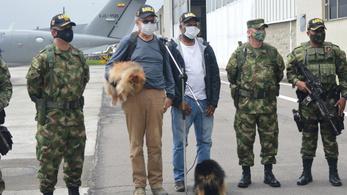 A kolumbiai katonaság megmentett két elrabolt külföldit és a kutyáikat