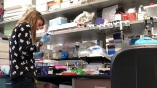 Hogyan hat az életmódváltás a mikrobiomunkra és a génjeinkre?