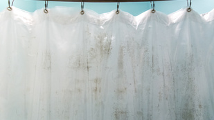 Így tisztítsd meg a zuhanyfüggönyt