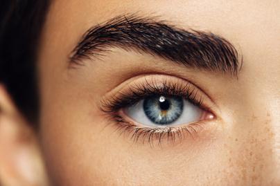 evol-szem (2)
