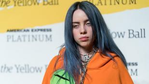 Egy őrült rajongó letáborozott Billie Eilish  tornácán