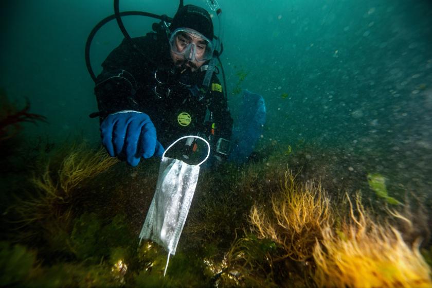 Borzasztó látvány a járvány utáni tengervíz: szívszorító, milyen károkat okozott a pánik