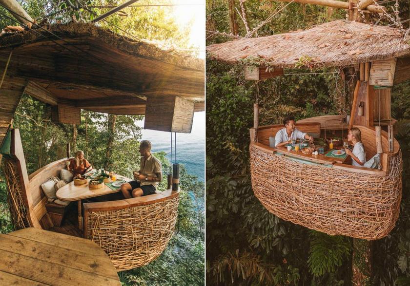 A Thaiföldön, Koh Kood trópusi szigetén található madárfészek-étterem egyedi élményt nyújt a vendégeknek. Öt méter magasan szolgálják fel az egzotikus fogásokat a másoktól teljesen elszigetelt étkezőasztalhoz, ahonnét csodás panoráma nyílik a tengerre. A pincérek kötélfelvonón juttatják fel az ételeket és az italokat.