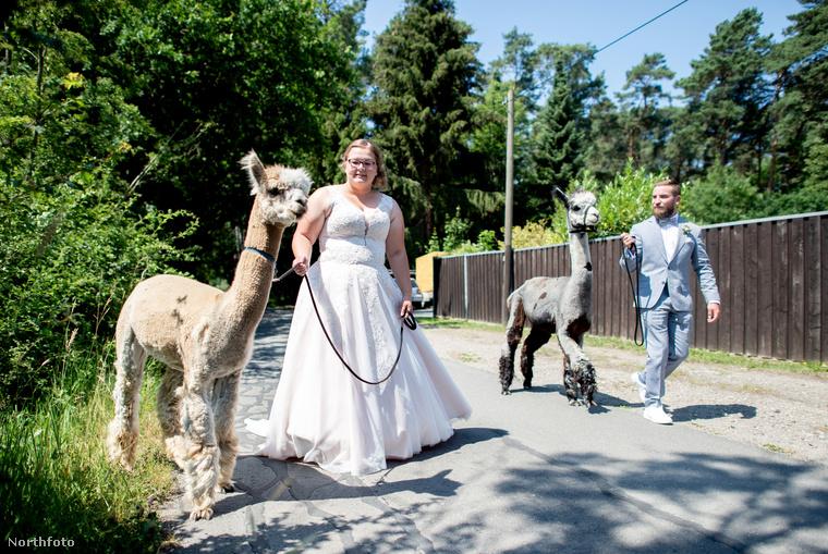 Sina és Marcel Reichardt esküvőjére lehet bepillantani ezekkel a jópofa képekkel