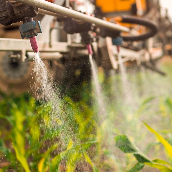 Szennyező anyagokat mutattak ki a hazai élelmiszerekben – A pajzsmirigy működésére is hatással vannak