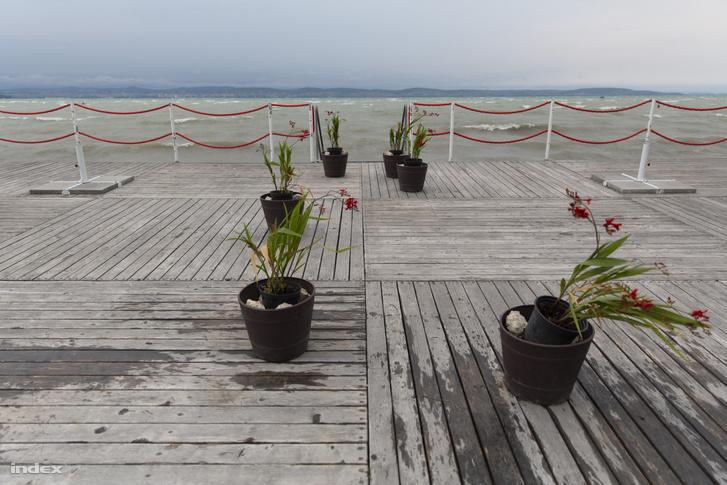 Cserepes növények a Balaton partján