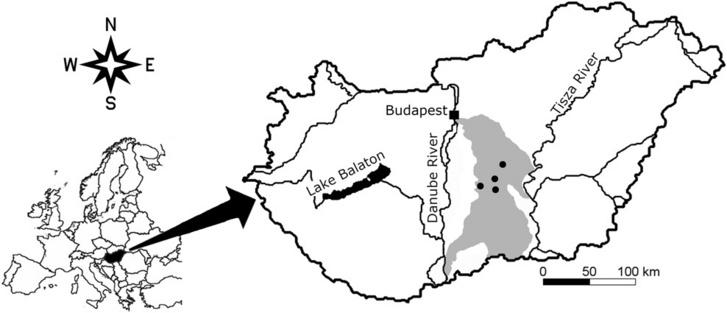 A mintavételi helyszínek (fekete pöttyök) a Duna-Tisza közi homokhátságon