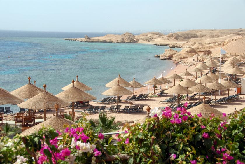 Tíz évvel ezelőtt, decemberben vérfürdővé változott az egyiptomi Sharm El Sheikh népszerű tengerpartja. Egy héten belül öt cápatámadás érte a gyanútlan vakációzókat, és ezek közül az egyik sajnos végzetesnek bizonyult. Bármikor megismétlődhet újra!