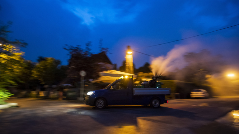 Már most sok a szúnyog Budapesten, de két hét múlva jön egy szúnyogcsúcs