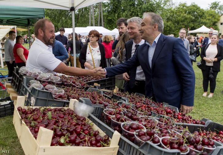 Nagy István agrárminiszter (j), Kara Ákos, a térség fideszes országgyűlési képviselője (j2) a pannonhalmi Pannonkamra termelői piacon a megnyitó napján, 2020. június 20-án.