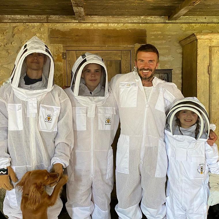 A fotón egy izgalmas vidéki családi progamot láthat: Backhemék méhészkedtek