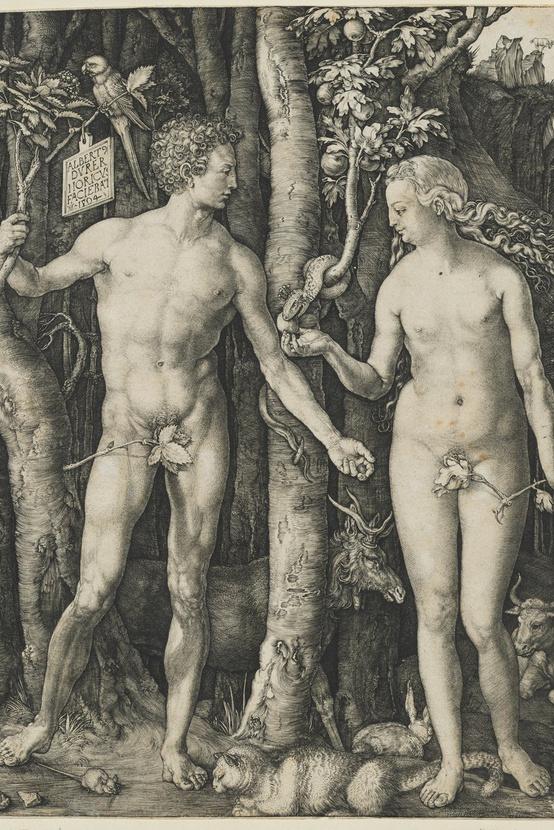 Albrecht Dürer: Ádám és Éva, 1504, rézmetszet