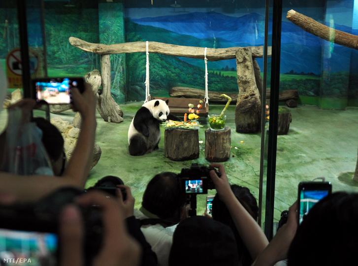 LátogatókünneplikJüanCejszületésnapját.