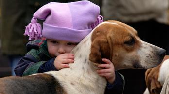 A gyerekek érzelmi és szociális fejlődését is segíti, ha van kutya a háznál