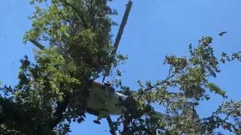 Meghalt az a siklóernyős, aki 20 méter magasból lezuhant, amikor menteni akarták