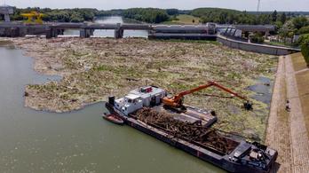 Áder: Már a gépek sem bírják a folyókon érkező szemét mentesítését
