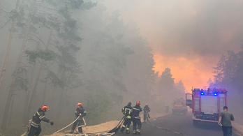 Lángol az erdő, négyen meghaltak Kelet-Ukrajnában