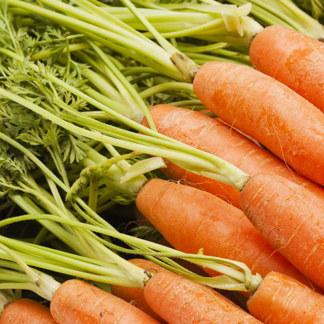 Ki ne dobd! A répa zöldje, cékla vagy brokkoli levele nagyon egészséges – Mit készíts belőle?