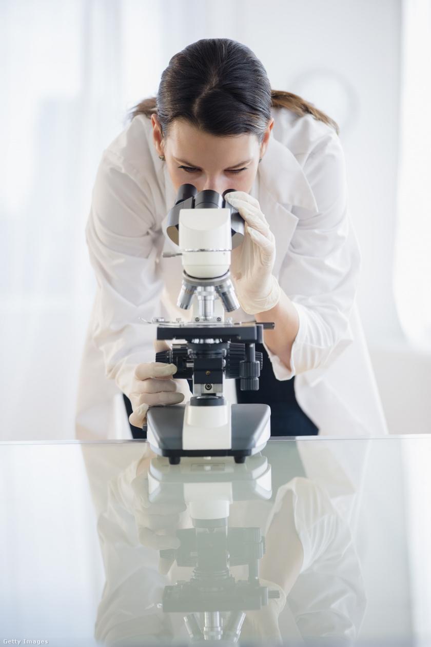 bakteriális rák vagy vírus