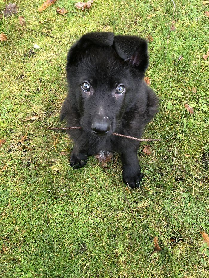 Játszunk?