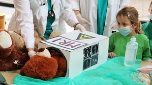 Teddy Maci Kórház